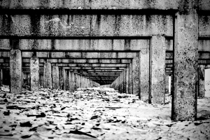 Under the boardwalk, the cement pilings exposed during the boardwalk construction.