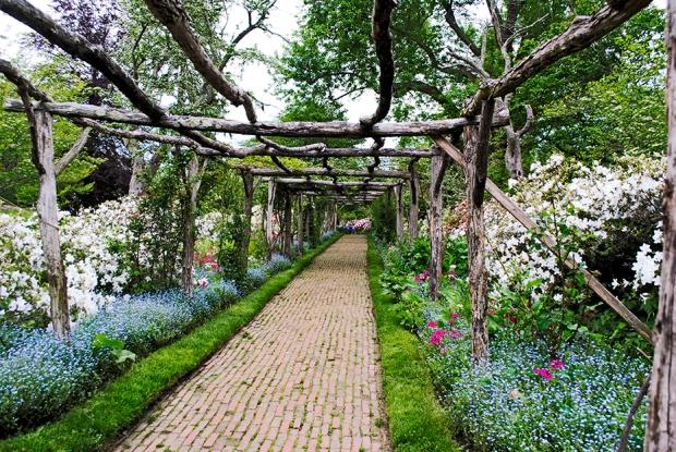 old westbury gardens, long island, new york, gold coast, flower, flowers, nature, plants, garden, primrose path