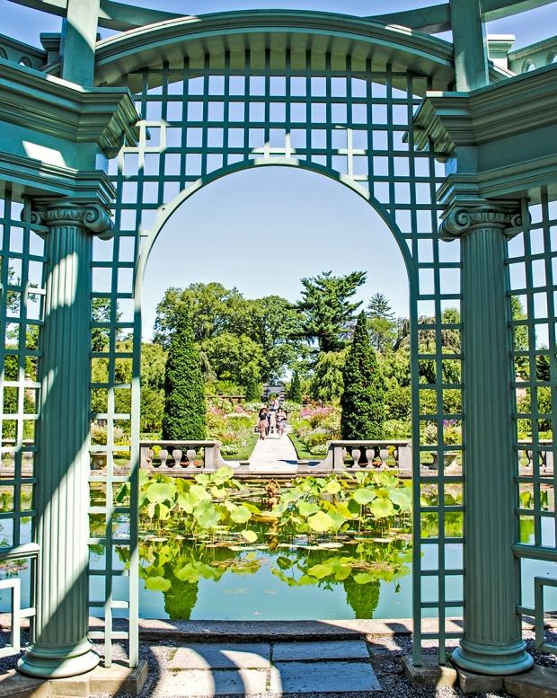 old westbury gardens, long island, new york, flower, flowers, garden, nature, plant, plants, old westbury gardens walled garden, the walled garden, walled garden