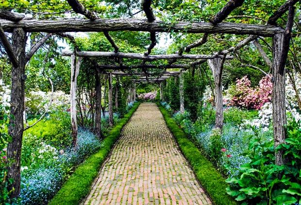 Old Westbury Garden's Primrose Path