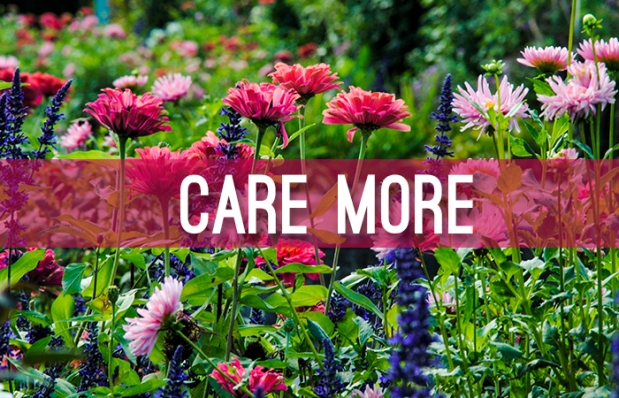 2016_care