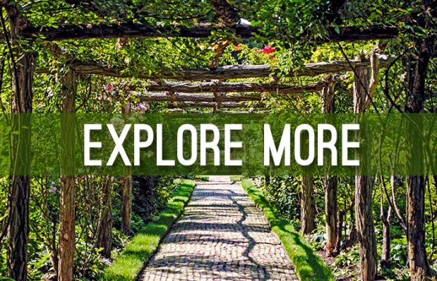2016_explore