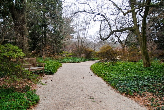 Planting Fields Arboretum, Oyster Bay, NY. Photo by Alyson Goodman.