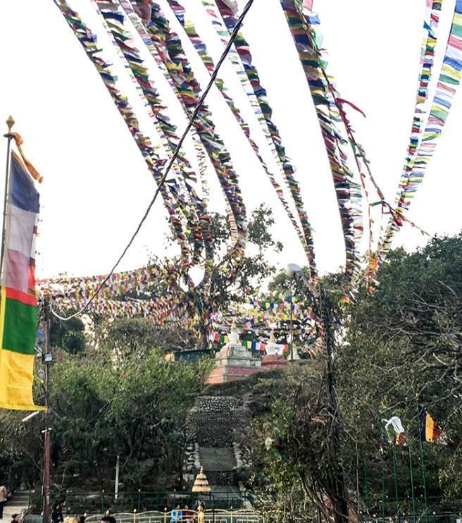 Swayambhunath in Kathmandu, Nepal. Photo by Alyson Goodman.