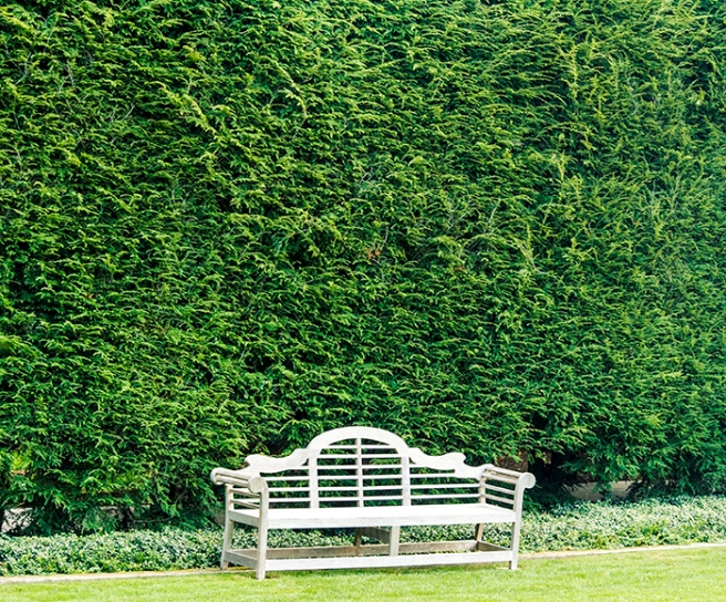 Old Westbury Gardens, Old Westbury, NY. Photo by Alyson Goodman.
