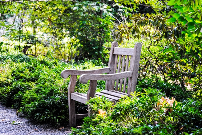 Clark Botanic Gardens in Albertson, NY. Photo by Alyson Goodman.