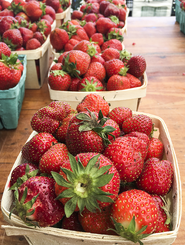 Strawberries at Briermere Farms in Riverhead, NY. Photo by Alyson Goodman.