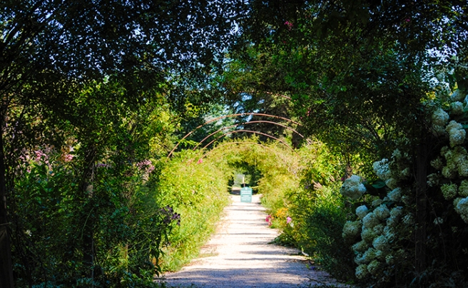 Path to the Rose Garden at Planting Fields Arboretum in Oyster Bay, NY. Photo by Alyson Goodman.