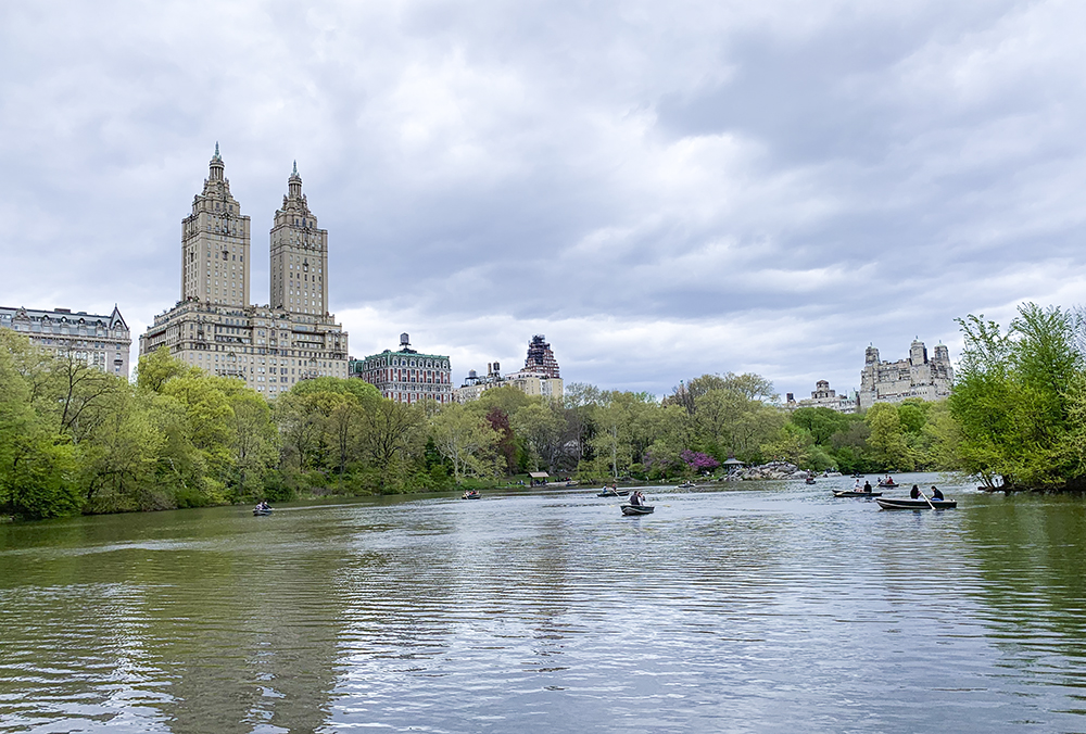 Central Park in New York, NY. Photo by Alyson Goodman.
